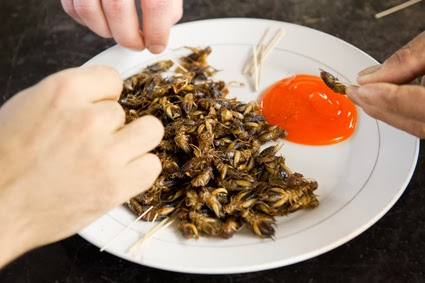 Fried Crickets Meal wit sauce